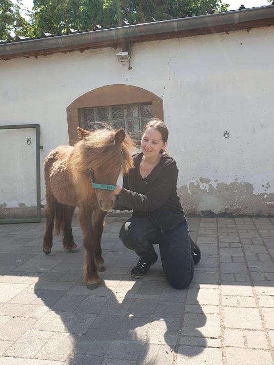 Pony und Mensch